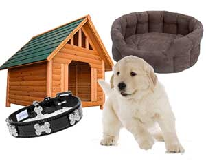 Pet accessories, pet supplies