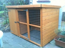 Wilton dog kennel and run, dog kennels and runs