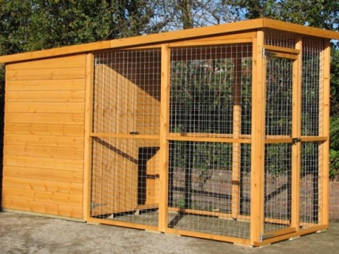 Avon dog kennel and run